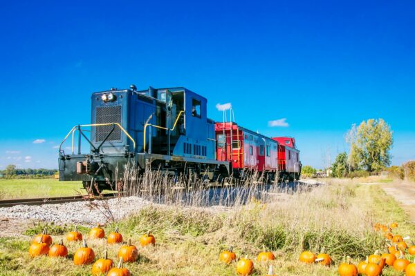 pumpkin-train-2018